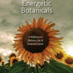 Energetic Essences E-Booklet Cover